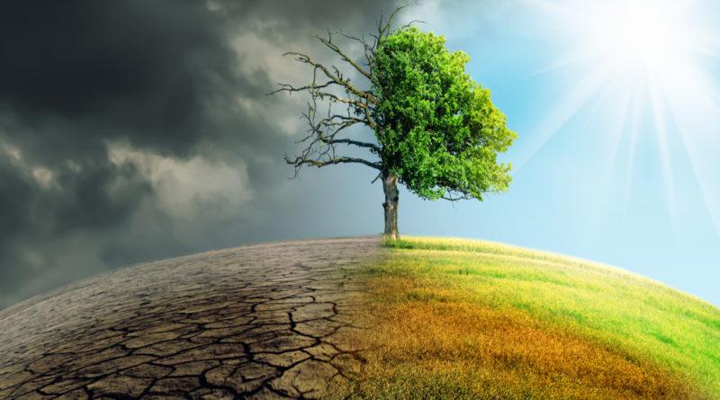 Klimawandel, Erderwärmung